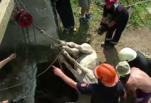 Cal salvat din canal în Călineşti