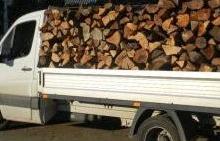Firmă forestieră din Mălureni, amendată